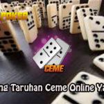 Trik Menang Taruhan Ceme Online Yang Efektif